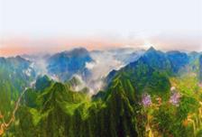 覆卮山景区