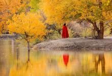 南疆是一种病,不去治不好;北疆是一种瘾,去过戒不掉......